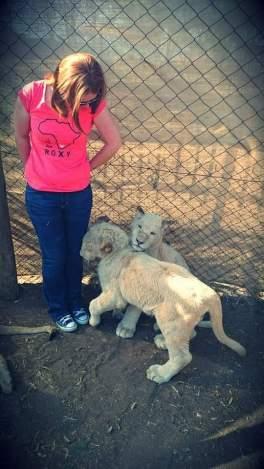 Lion Park - Randburg, Joburg